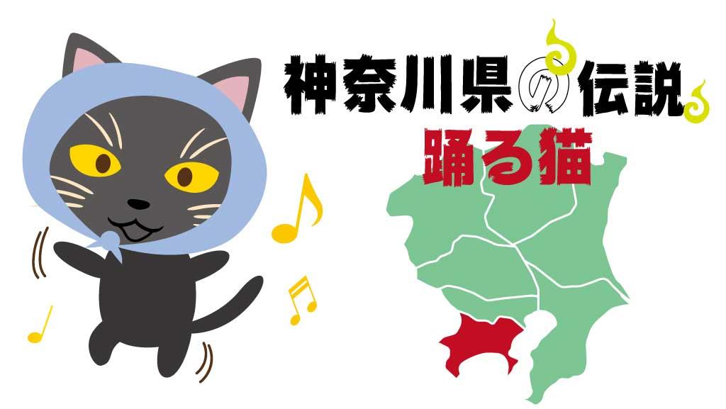神奈川県の妖怪踊る猫