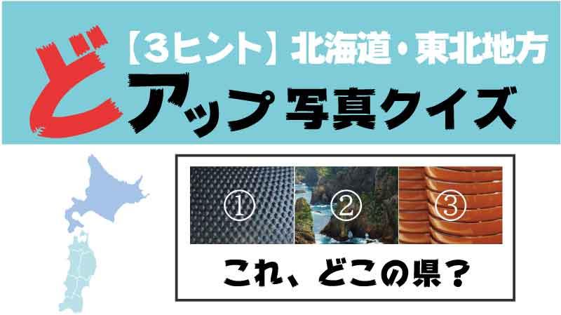ドアップ写真3ヒント北海道東北地方タイトル
