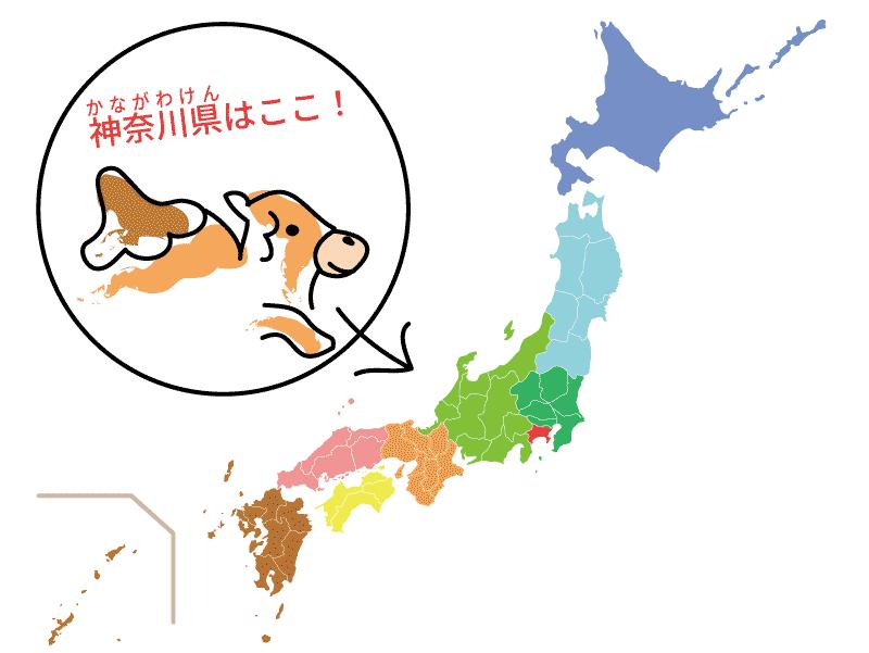 神奈川県の位置