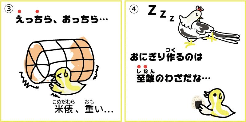 新潟県の米2