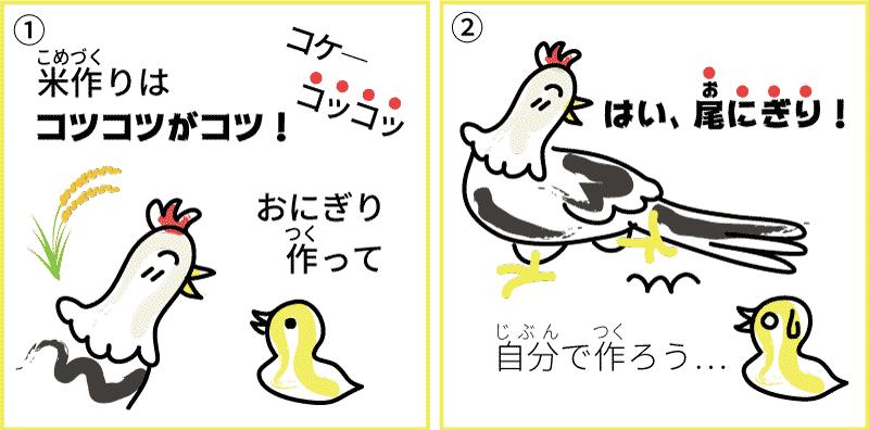 新潟県の米1