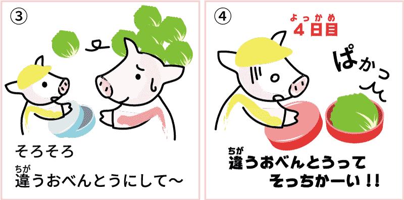 長野県のレタス2