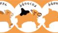 神奈川県の楽しい覚え方、県庁所在地【関東地方】日本地図入り