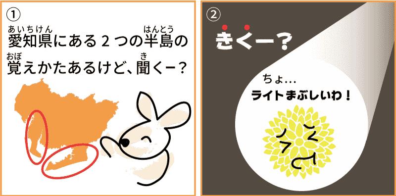 愛知県の菊1