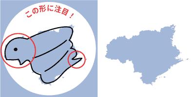 徳島県の形