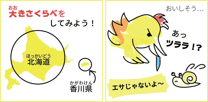 北海道と香川県の面積