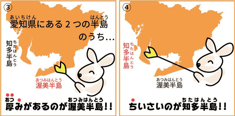 愛知県の菊2