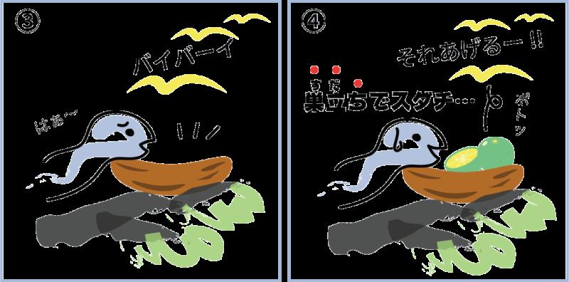 徳島県のスダチ2