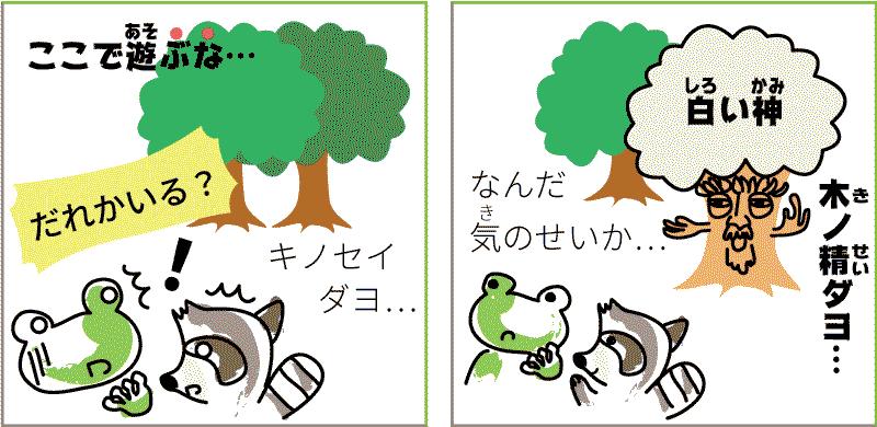 青森県と秋田県の白神山地
