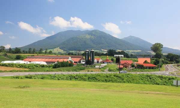 岡山県の蒜山高原